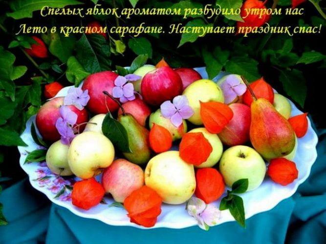 открытки яблочный спас красивые