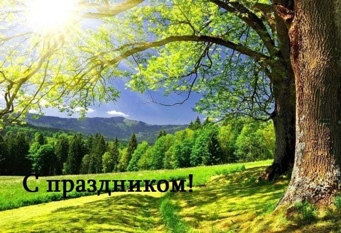 день работников леса поздравления