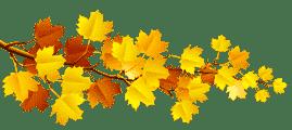 Загадки про осень для детей в рифму