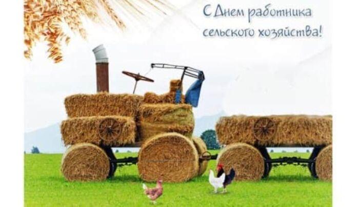 самые прикольные поздравления с днем работника сельского хозяйства