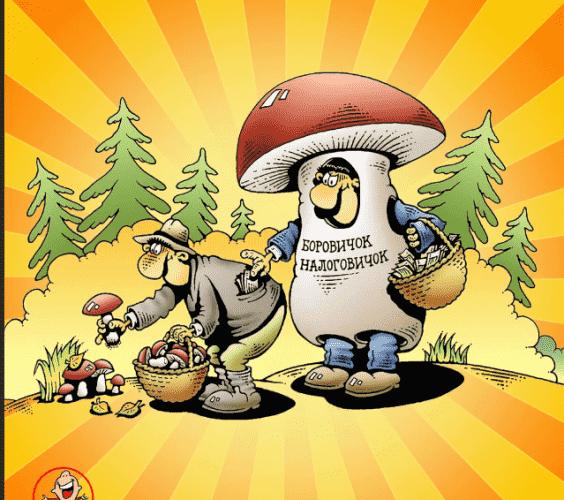 открытки про грибы смешные