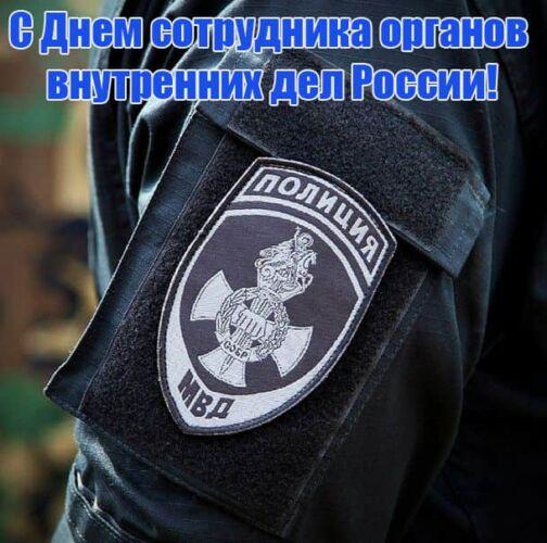 поздравления с днем полиции коллегам