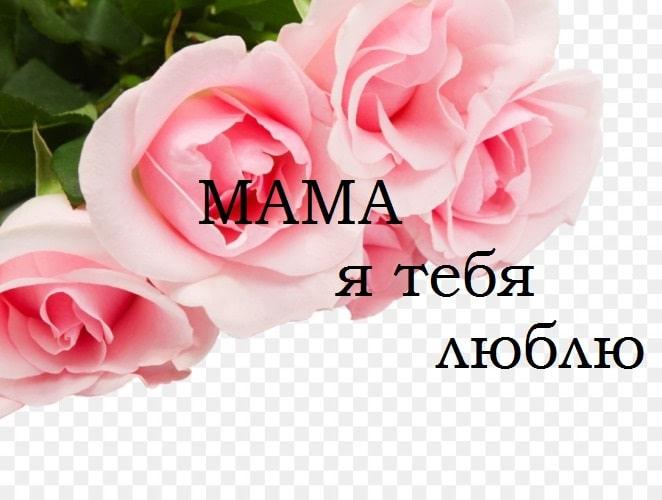 Длинные стихи про маму