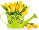Трогательные и красивые поздравления с Днем матери