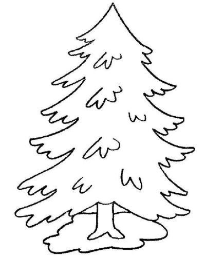 ветки елки шаблоны для вырезания