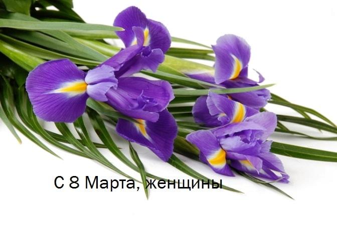 прикольные поздравления с 8 марта женщине в прозе