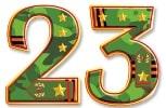 23 февраля поздравления прикольные