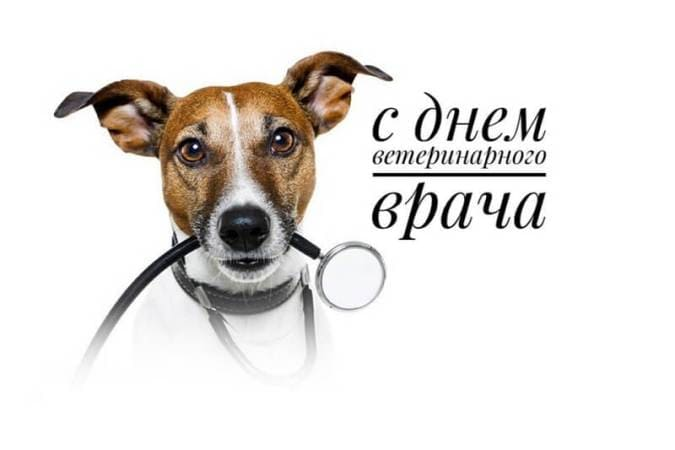 открытки с днем ветеринара скачать бесплатно