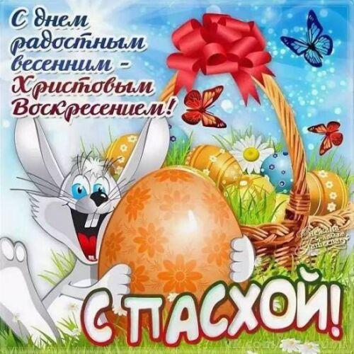 прикольные картинки на пасху яйца