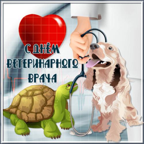 открытки с днем ветеринара скачать бесплатно гиф