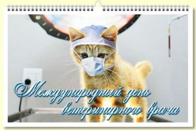 открытки с днем ветеринарного врача прикольные