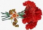 Трогательные стихи на 9 мая на конкурс чтецов