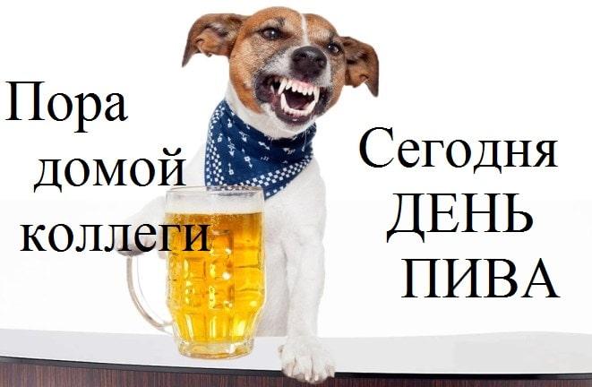 картинки про работу и пиво
