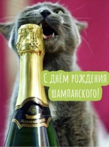 картинки с днем шампанского с надписями