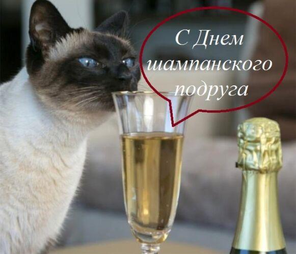 картинки с днем шампанского с надписями прикольные